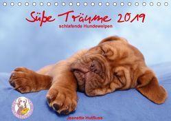 Süße Träume 2019 – schlafende Hundewelpen (Tischkalender 2019 DIN A5 quer) von Hutfluss,  Jeanette