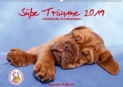Süße Träume 2019 – schlafende Hundewelpen (Wandkalender 2019 DIN A2 quer) von Hutfluss,  Jeanette