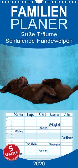 Süße Träume 2020 – schlafende Hundewelpen – Familienplaner hoch (Wandkalender 2020 , 21 cm x 45 cm, hoch) von Hutfluss,  Jeanette