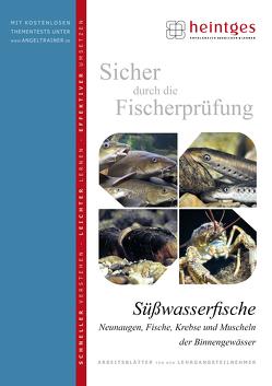 Süßwasserfische von Bayrle,  Hermann, Heintges,  Wolfgang