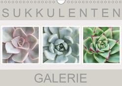 Sukkulenten Galerie (Wandkalender 2019 DIN A4 quer) von Wurster,  Beate