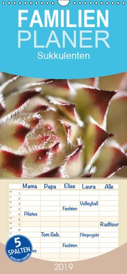 Sukkulenten – Pflanzen für Steingärten und Dachbegrünung – Familienplaner hoch (Wandkalender 2019 , 21 cm x 45 cm, hoch) von Lorz - LoRo-Artwork,  Rosi