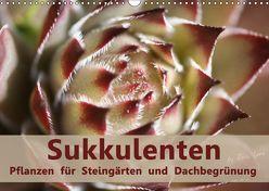 Sukkulenten – Pflanzen für Steingärten und Dachbegrünung (Wandkalender 2019 DIN A3 quer)