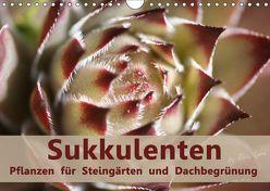 Sukkulenten – Pflanzen für Steingärten und Dachbegrünung (Wandkalender 2019 DIN A4 quer) von Lorz - LoRo-Artwork,  Rosi