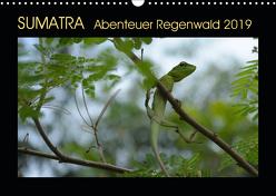 SUMATRA Abenteuer Regenwald (Wandkalender 2019 DIN A3 quer) von Grallert,  Bettina
