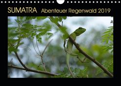 SUMATRA Abenteuer Regenwald (Wandkalender 2019 DIN A4 quer) von Grallert,  Bettina