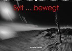 Sylt … bewegt (Wandkalender 2019 DIN A2 quer)