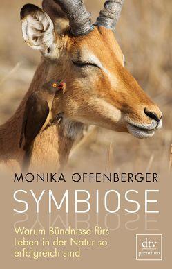 Symbiose von Offenberger,  Monika