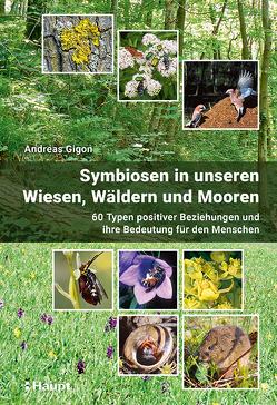Symbiosen in unseren Wiesen, Wäldern und Mooren von Gigon,  Andreas