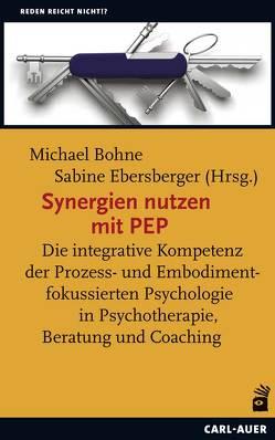 Synergien nutzen mit PEP von Bohne,  Michael, Ebersberger,  Sabine