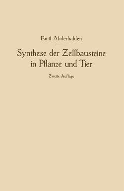Synthese der Zellbausteine in Pflanze und Tier von Abderhalden,  Emil