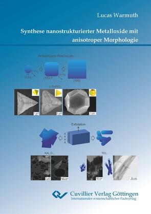 Synthese nanostrukturierter Metalloxide mit anisotroper Morphologie von Warmuth,  Lucas