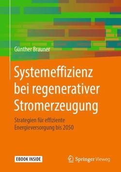Systemeffizienz bei regenerativer Stromerzeugung von Brauner,  Günther