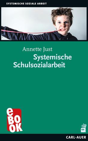 Systemische Schulsozialarbeit von Just,  Annette