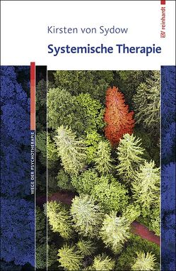 Systemische Therapie von von Sydow,  Kirsten