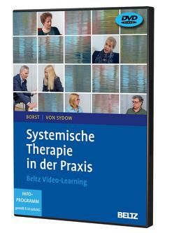 Systemische Therapie in der Praxis von Borst,  Ulrike, Sydow,  Kirsten von