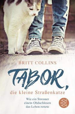 Tabor, die kleine Straßenkatze von Collins,  Britt, Wais,  Johanna