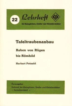 Tafeltraubenanbau von Petzold,  Herbert