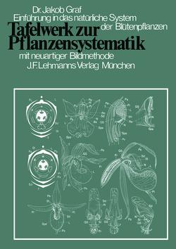 Tafelwerk zur Pflanzensystematik von Graf,  J., Kristen,  I., Weber,  A, Weber,  H.