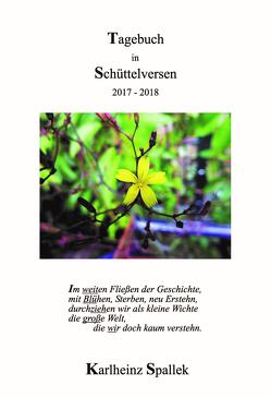 Tagebuch in Schüttelversen von Spallek,  Karlheinz