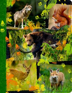 Tagebuch m. Reißverschluss – Nature Zoom – Waldtiere