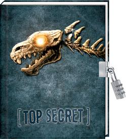 Tagebuch – Rulantica – Top Secret von Vogt,  Helge
