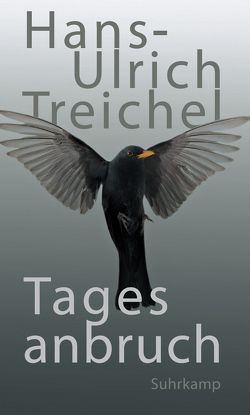 Tagesanbruch von Treichel,  Hans-Ulrich