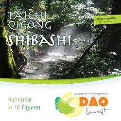 TaiChi Qigong – Shibashi von Schneider,  Thomas-Eugen
