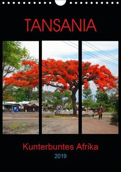 TANSANIA – Kunterbuntes Afrika (Wandkalender 2019 DIN A4 hoch) von Schimmack,  Claudia