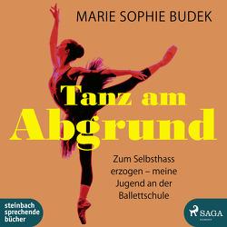 Tanz am Abgrund von Budek,  Marie Sophie, Wolff,  Carolin-Therese