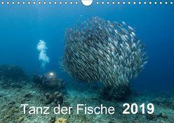 Tanz der Fische (Wandkalender 2019 DIN A4 quer) von - Yvonne & Tilo Kühnast,  naturepics
