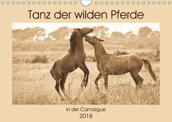 Tanz der wilden Pferde in der Camargue (Wandkalender 2018 DIN A4 quer) von Bölts,  Meike