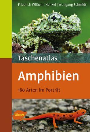 Taschenatlas Amphibien von Henkel,  Friedrich Wilhelm, Schmidt,  Wolfgang
