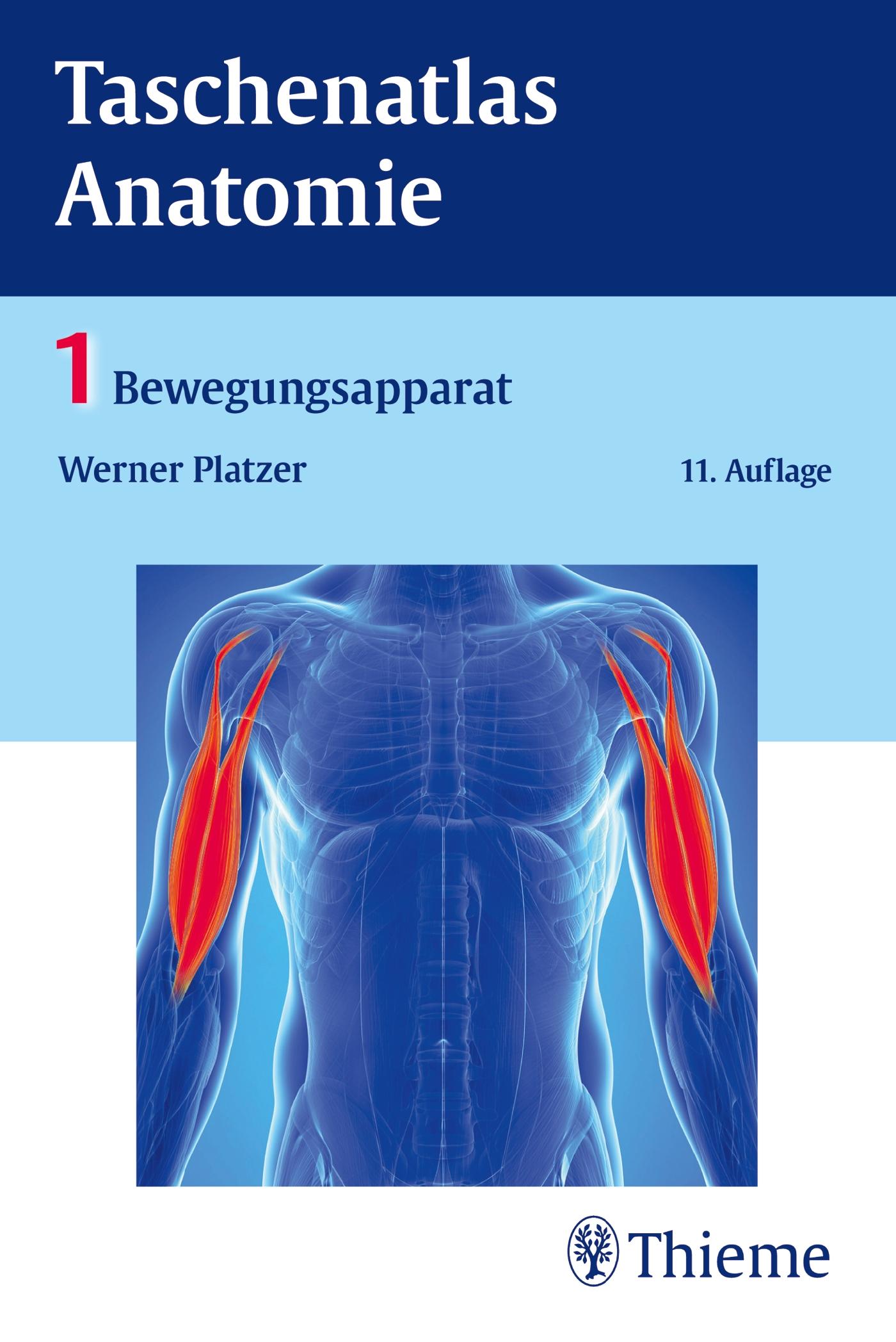 Taschenatlas Anatomie, Band 1: Bewegungsapparat von Platzer, Werner: