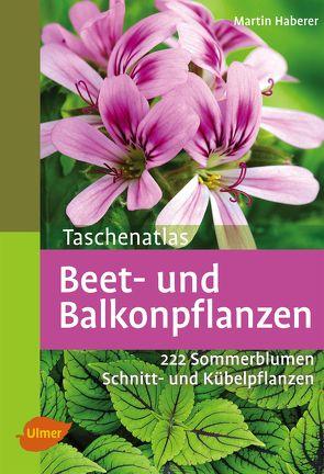 Taschenatlas Beet- und Balkonpflanzen von Haberer,  Martin