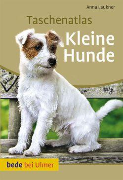 Taschenatlas Kleine Hunde von Laukner,  Anna