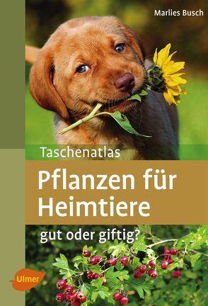 Taschenatlas Pflanzen für Heimtiere von Busch,  Marlies