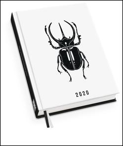 Taschenkalender Atlas-Käfer 2020 – Von Viktoria Åström – Terminplaner mit Wochenkalendarium – Format 11,3 x 16,3 cm von Åström,  Viktoria, DUMONT Kalenderverlag