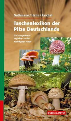 Taschenlexikon der Pilze von Guthmann,  Jürgen, Hahn,  Christoph, Reichel,  Rainer