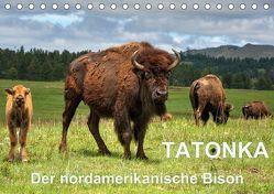TATONKA Der nordamerikanische Bison (Tischkalender 2019 DIN A5 quer)