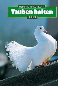 Tauben halten von Mackrott,  Heinrich