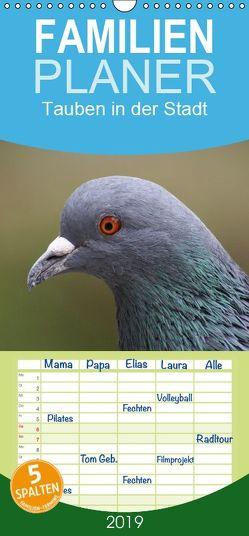 Tauben in der Stadt – Familienplaner hoch (Wandkalender 2019 , 21 cm x 45 cm, hoch) von kattobello