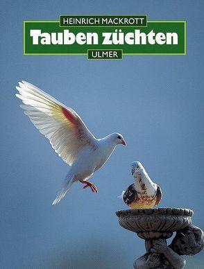 Tauben züchten von Mackrott,  Heinrich