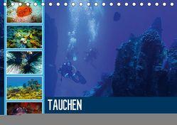 Tauchen auf den Sychellen (Tischkalender 2019 DIN A5 quer) von Meutzner,  Dirk