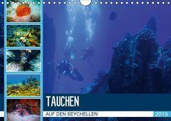 Tauchen auf den Sychellen (Wandkalender 2019 DIN A4 quer) von Meutzner,  Dirk