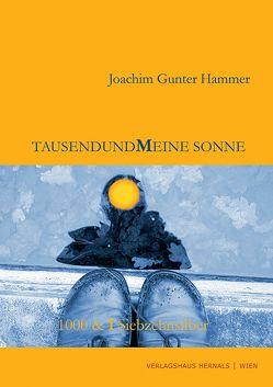 Tausendundmeine Sonne von Hammer,  Joachim G