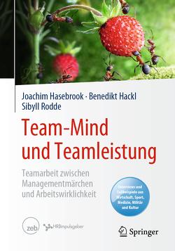Team-Mind und Teamleistung von Hackl,  Benedikt, Hasebrook,  Joachim, Rodde,  Sibyll