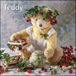 Teddy 2019 – Broschürenkalender – Wandkalender – mit herausnehmbarem Poster – Format 30 x 30 cm von DUMONT Kalenderverlag