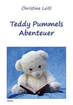 Teddy Pummels Abenteuer von Leitl,  Christine