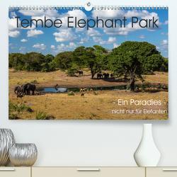 Tembe Elephant Park. Ein Paradies – nicht nur für Elefanten (Premium, hochwertiger DIN A2 Wandkalender 2020, Kunstdruck in Hochglanz) von rsiemer